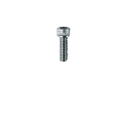 Caphead Machine Screws 6x13mm. 10 pcs.