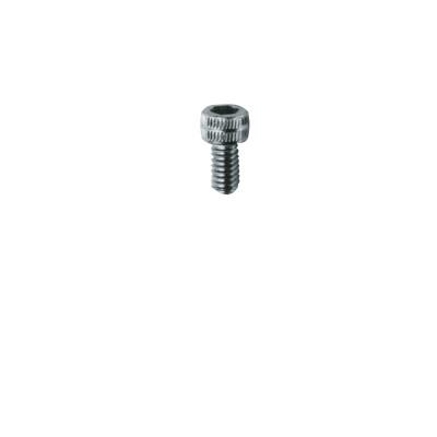Caphead Machine Screws 6x8mm. 10 pcs.