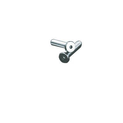 Lowhead Screws 0.2x2cm 5 pieces