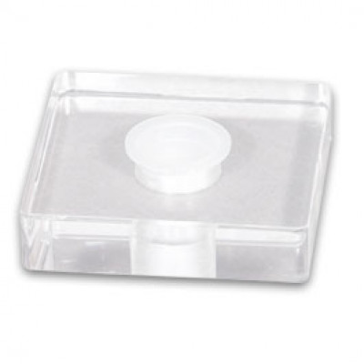 Plexiglas Cap Holder 1x25mm