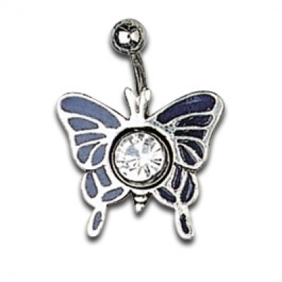 Silver Shield Blue Butterfly