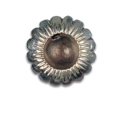Silver Shield Flower