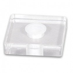 Plexiglas Cap Holder 1x25mm