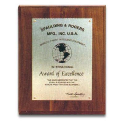 International Award of Excellence