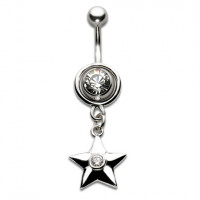 Silver Shield Jewelled Star Dropper Crystal